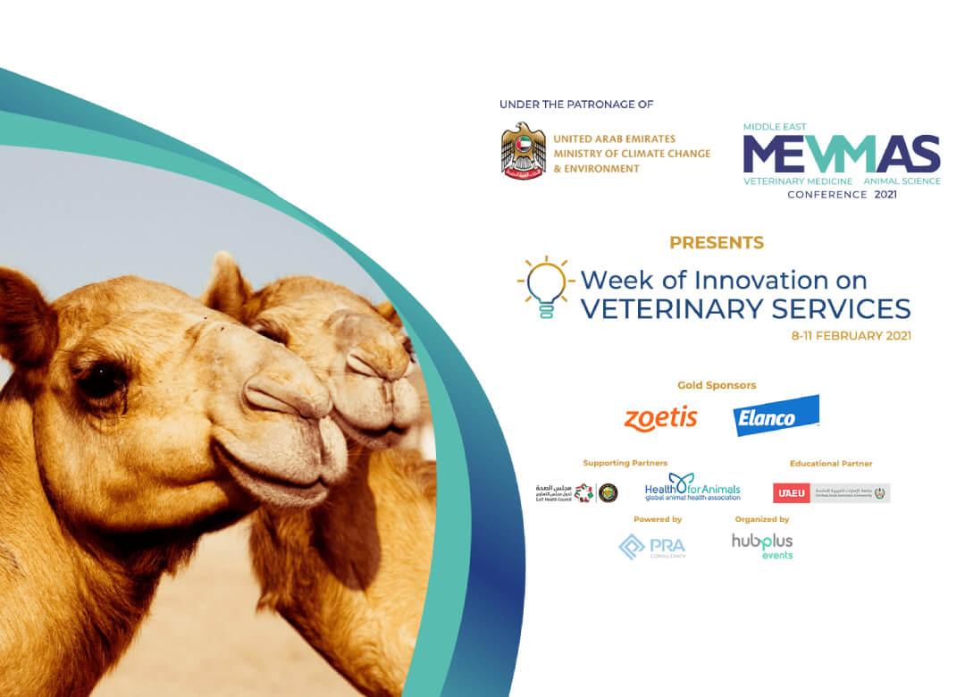 Innovation on VETERINARY SERVICES - FEB 2021